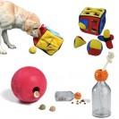 Accessori per il Beagle: i giochi 'intelligenti' - Occupazione