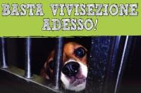 Corteo nazionale contro la vivisezione