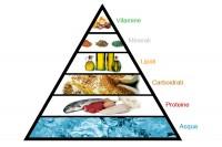 La piramide alimentare foto