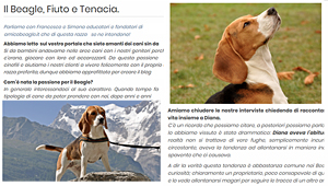 Amico Beagle su abbaiareinitalia.it