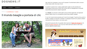 Amico Beagle su dognews.it