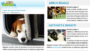 Amico Beagle su gliaffidabili.it