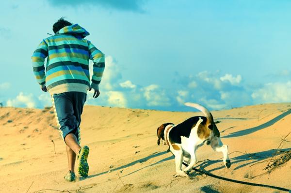 Il Beagle: per molti ma non per tutti