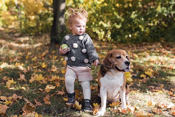 beagle e bambini foto
